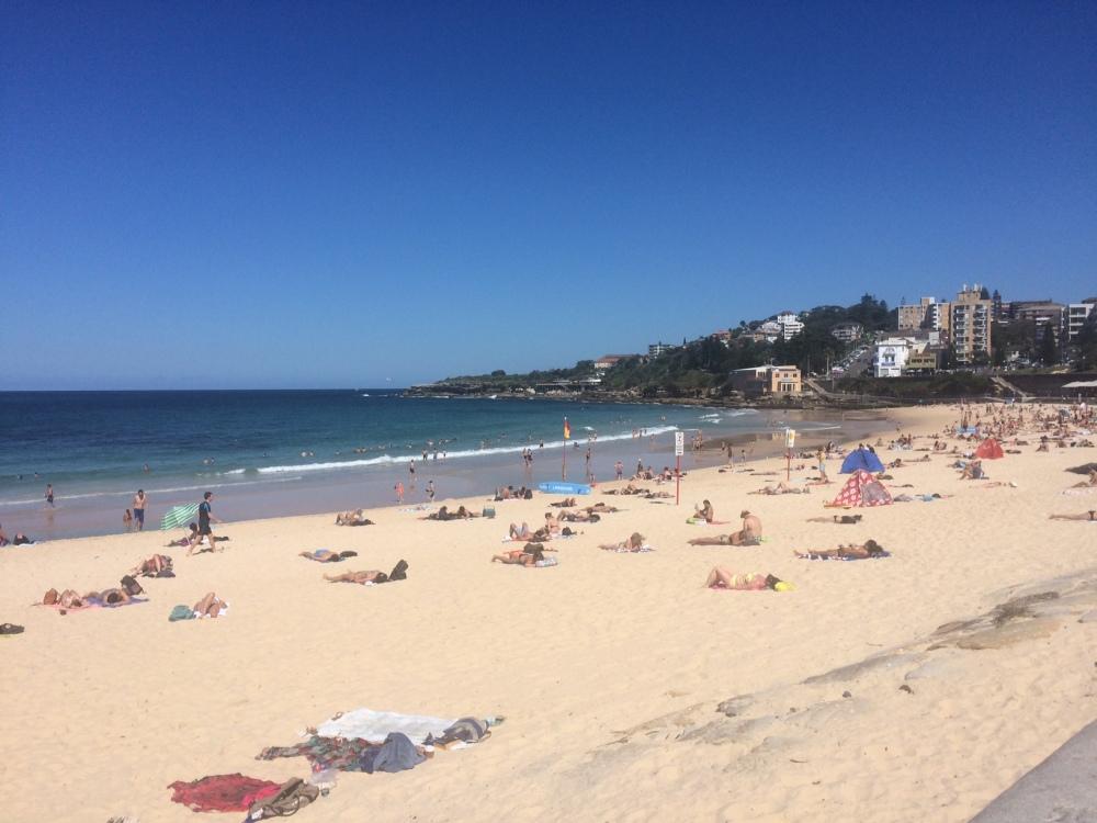 Coogee Beach: dia de sol