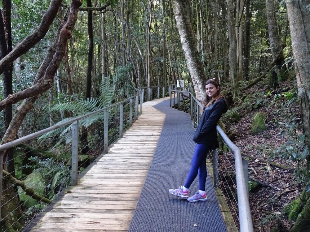 Trilha das Blue Mountains, Katoomba, Austrália