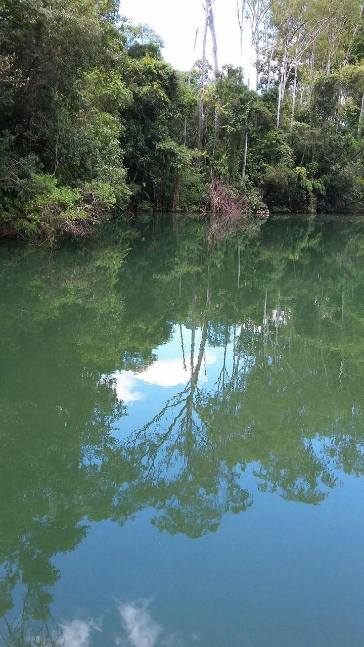 Inhotim em Brumadinho. Lago do parque