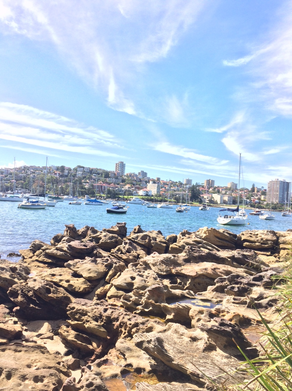 Balgowlah Heights, Manly walk