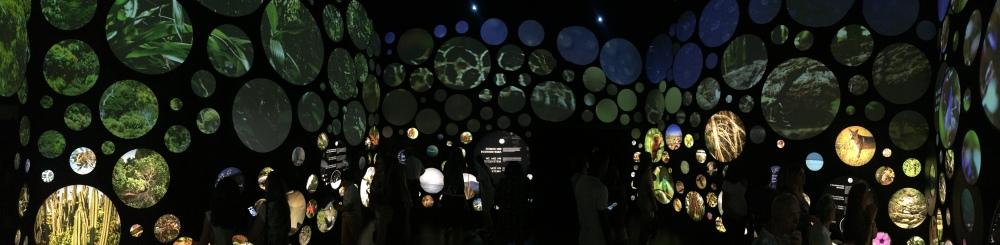 Um museu para fazer o futuro melhor no Rio de Janeiro