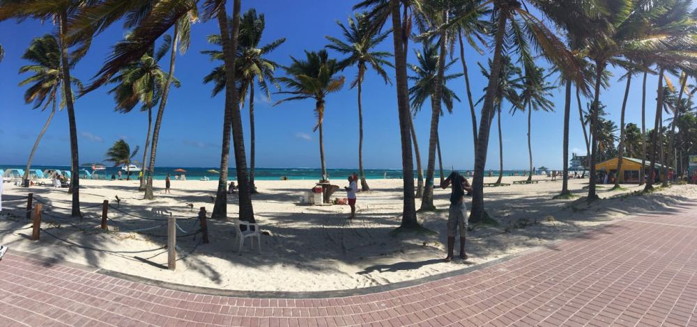Praia de San Andres com coqueiros e mar azul