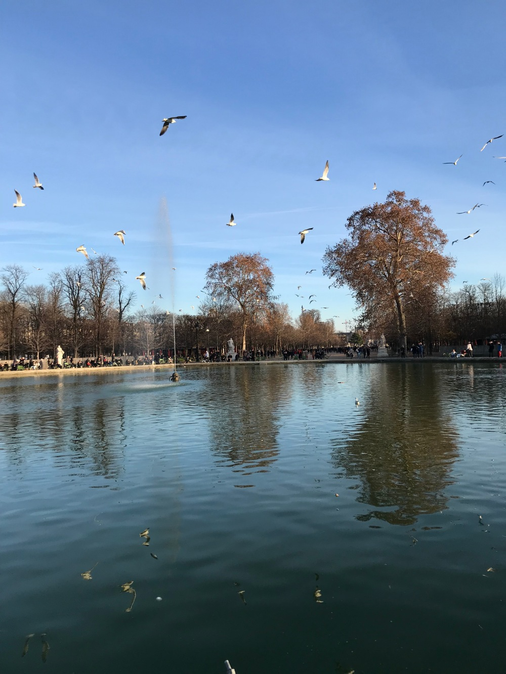 Chafariz do Jardim de Tuileries em Paris
