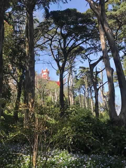 Palácio Nacional da Pena visto do jardim